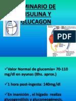 Seminario de INS y Glucagon-2013