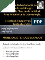 Proteccion Pulpar (Fija)