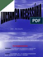 lideranaeseusprincpios-100727210641-phpapp02