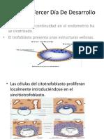 Expo Embriologia,Bioquimica,Anatomia
