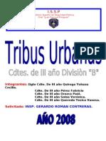 Estudio Sobre Tribus Urbanas