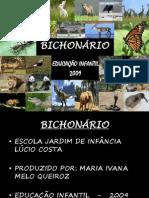 bichonrioreformulado-091027205349-phpapp02