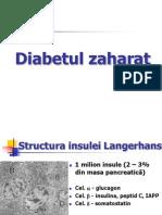 CURS 10 Diabet Zaharat 2011