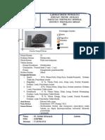 batu asam (2)
