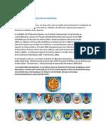 ANALISIS DE LA FORMACION ACADEMICA.docx