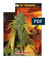 54047144 Growing for Dummies
