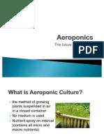 72044819 Aeroponics