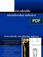 Articulatiile Membrului Superior - Inginerie Medicala