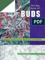 66519896 Big Book of Buds