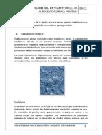 pract 05 microb. aislamiento  de staphylococcus aureus.docx