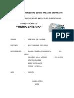 REINGENIERIA[1]