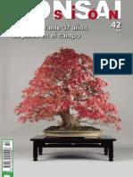 176941635-Bonsai-Pasion-42