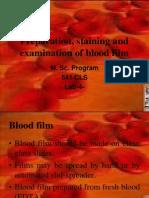 Lab Number 4 Blood Film