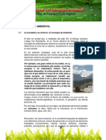 1.enfoque_ambiental[1]