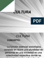 6 Cultura