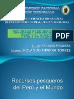 RECURSOS PESQUEROS- TIPARRA