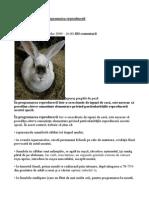 iepuri-reproducere