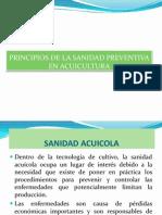 Sanidad Acuicola 2012 i (1)