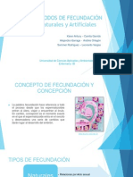 metodosdefecundacion-130428105259-phpapp01.pptx
