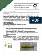 lasvinas_cromatografiapvegetales.pdf