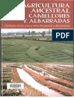 AGRICULTURA ANCESTRAL CAMELLONES y ALBARRADAS