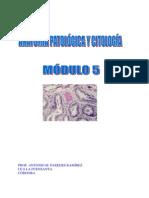 Libro de Anatomia Patologica M5