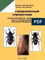 Izhevskij2005 Ill Sprav Zhukov-ksilofagov
