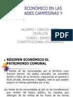 Regiemen Economicos en Las Comunidades Nativas