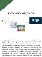 Bioquimica II Capitulo 8 Pigmentos