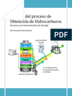 Análisis del proceso de Obtención de Hidrocarburos