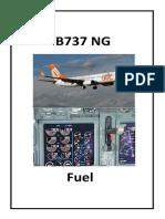 B_NG-Fuel