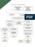 Pathophysiology of Meniere- Final