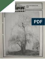 363-revistapulso-19880918.pdf