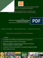 Relación entre las tecnologías MIP y la producción orgánica de papa