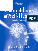 Gerald Epstein_The Natural Laws of Self-Healing