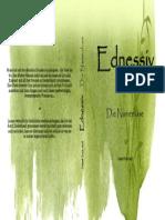"""Cover für """"Ednessiv I - Die Namenlose"""""""