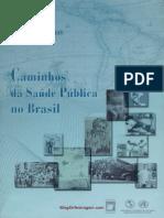 Livro-CaminhosdaSaudePublicanoBrasil.pdf
