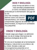 Vinos y Enología06