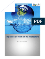 Impactos Negativos Na Hidrosfera - Trabalho Escrito
