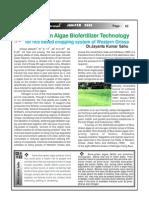 Blue Green Algae Bio Fertilizer Technology