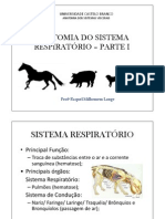 Anatomia Do Sistema Respiratorio (1)