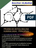 Inmunohematolgoia Basica.