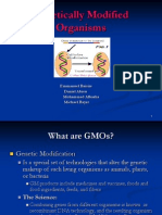Genetically Modified Organism (GMO-Food)-Emanuel Baisire