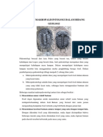 Aplikasi Makropaleontologi Dalam Geologi