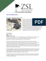 Axolotl Conservation