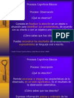 Procesos Cognitivos Basicos