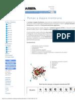 Pompe a Membrana Certificate Atex Per Prodotti Chimici
