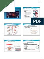 Fisiologia Circulatoria - Pressao Arterial