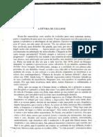 A Dúvida de Cézanne.pdf