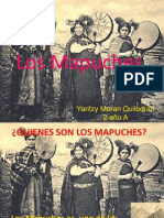 Quienes Son Los Mapuches
